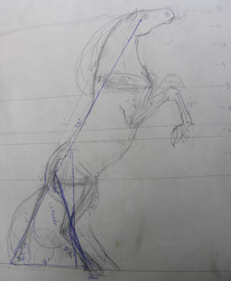 scetch of the horse sculpture